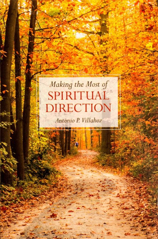 Available here https://scepterpublishers.org/products/making-the-most-of-spiritual-direction